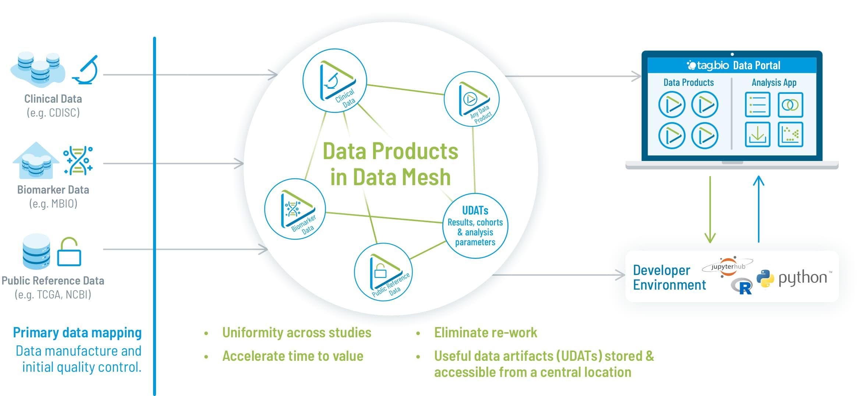 Data harmonized using data mesh